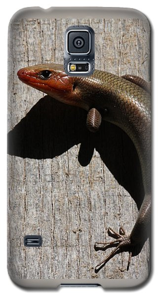 Broad-headed Skink On Barn  Galaxy S5 Case