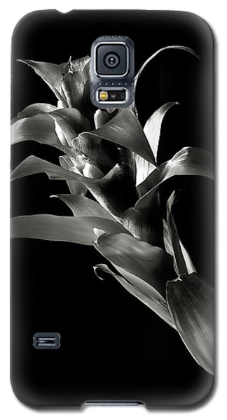 Galaxy S5 Case featuring the photograph Bromeliad In Black And White by Endre Balogh