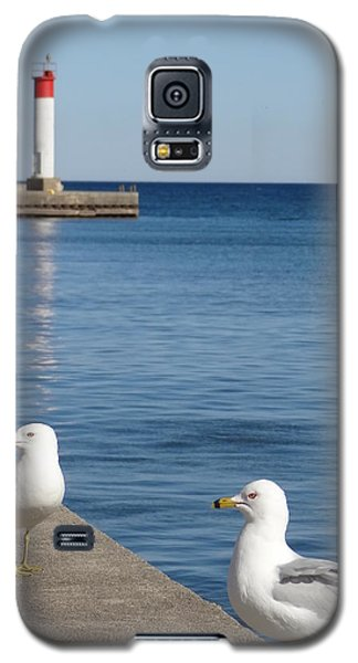 Galaxy S5 Case featuring the photograph Bronte Lighthouse Gulls by Laurel Best