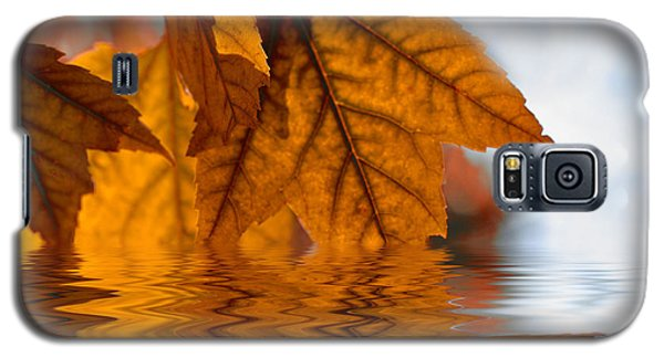 Bronze Reflections In Autumn Galaxy S5 Case by Elaine Manley