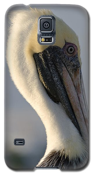 Brown Pelican Profile Galaxy S5 Case by Ed Gleichman