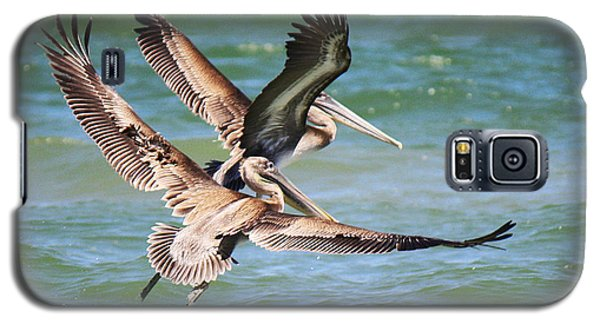 Brown Pelicans Taking Flight Galaxy S5 Case