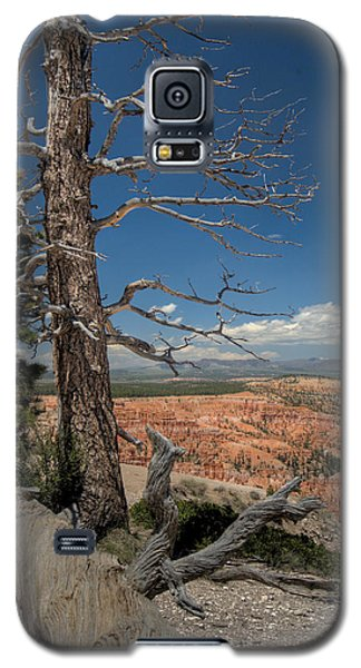 Bryce Canyon - Dead Tree Galaxy S5 Case