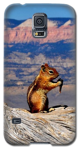 Bryce Lunch Up Close Galaxy S5 Case