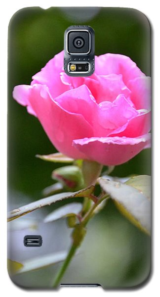 Bubblegum Rose Galaxy S5 Case by Bonnie Myszka