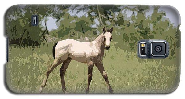 Buckskin Pony Galaxy S5 Case