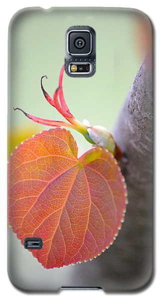 Budding Heart Galaxy S5 Case by JD Grimes