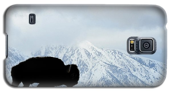 Galaxy S5 Case featuring the photograph Buffalo Suvived Another Yellowstone Winter by Dan Friend