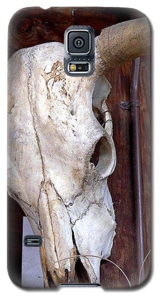 Bull Skull Galaxy S5 Case