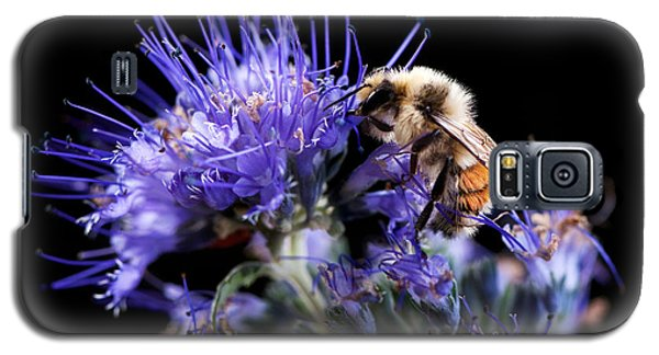 Bumble Bee On Blue Flower Galaxy S5 Case