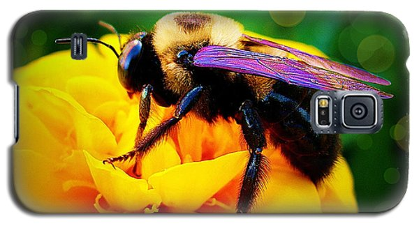Galaxy S5 Case featuring the photograph Bumblebee With Bokeh by Judi Bagwell