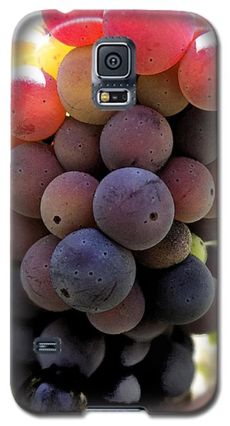 Galaxy S5 Case featuring the digital art Bunch Of Ripening Grapes by Anne Mott