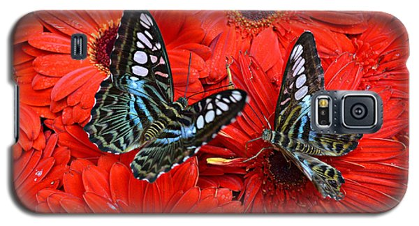 Galaxy S5 Case featuring the photograph Butterflies On Red Flowers by Rima Biswas
