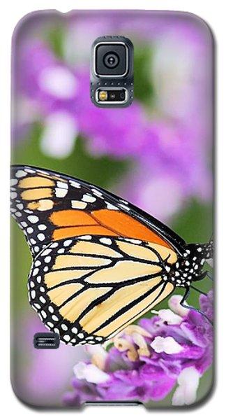 Butterfly Beauty Galaxy S5 Case by Elizabeth Budd