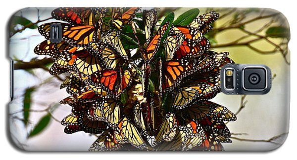 Butterfly Bouquet Galaxy S5 Case