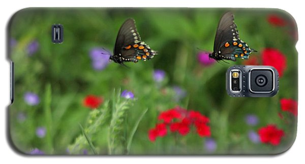 Butterfly Chase Galaxy S5 Case by Susan Rovira
