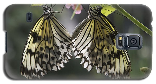 Galaxy S5 Case featuring the photograph Butterfly Duo by Eunice Gibb