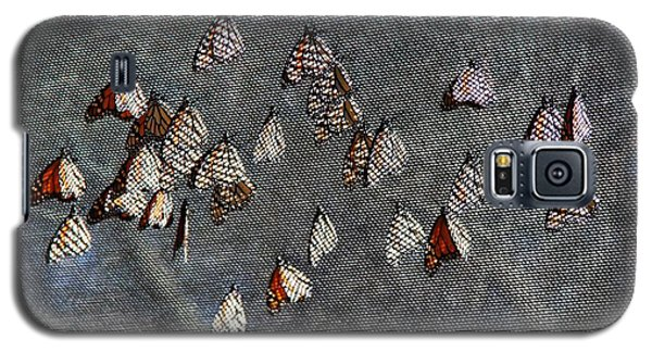 Galaxy S5 Case featuring the photograph Butterfly Gathering by Tam Ryan