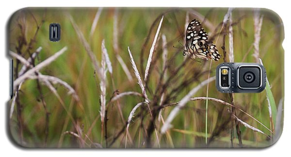 Galaxy S5 Case featuring the photograph Butterfly In Flight by Fotosas Photography