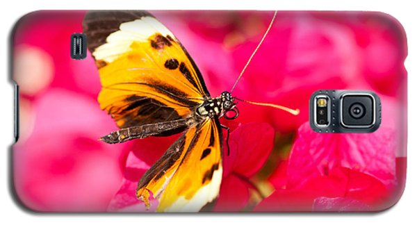 Galaxy S5 Case featuring the photograph Butterfly by Les Palenik