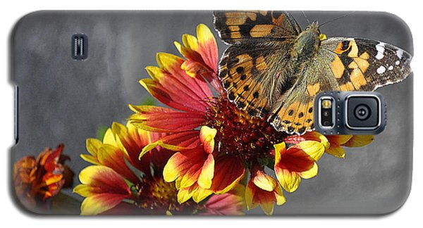Galaxy S5 Case featuring the photograph Butterfly On A Gaillardia by Verana Stark