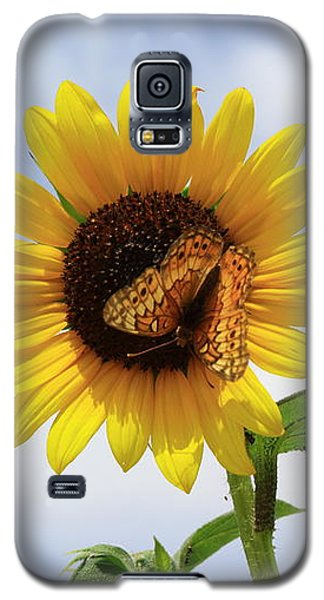 Butterfly On A Sunflower Galaxy S5 Case