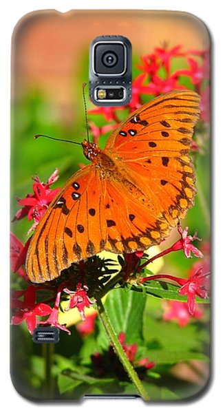 Galaxy S5 Case featuring the photograph Butterfly On Pentas by Carla Parris