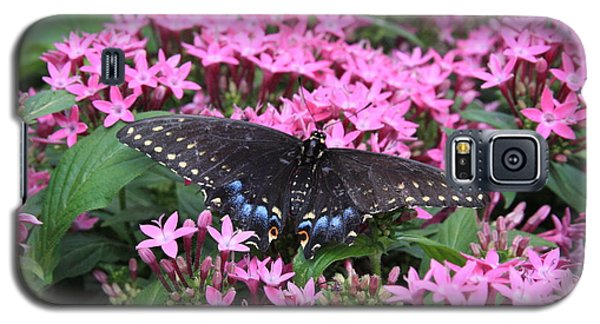 Butterfly Pinkflowers Galaxy S5 Case by Jerry Bunger