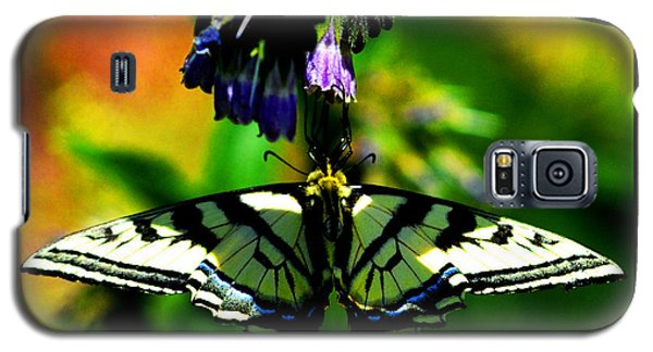 Galaxy S5 Case featuring the photograph Butterfly Upside Down On Comfrey Flowers by Susanne Still