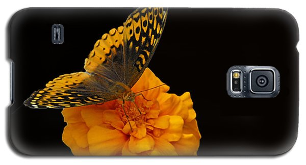 Galaxy S5 Case featuring the photograph Butterfly Visitor by Cindy Manero