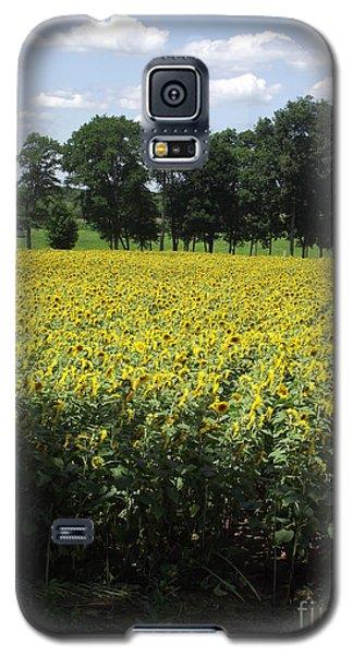 Buttonwood Farm Galaxy S5 Case