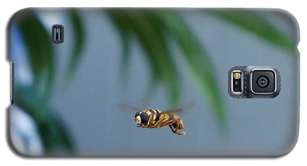 Buzz Of The Hover Fly Galaxy S5 Case