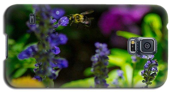 Buzzing Around Galaxy S5 Case