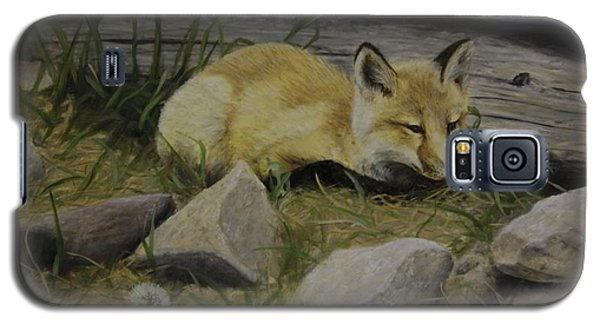 By The Den Galaxy S5 Case