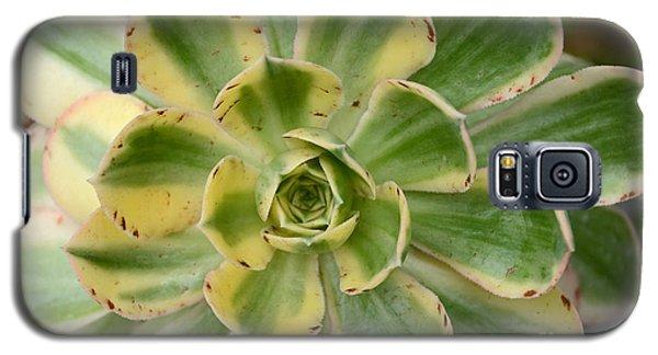 Cactus 63 Galaxy S5 Case