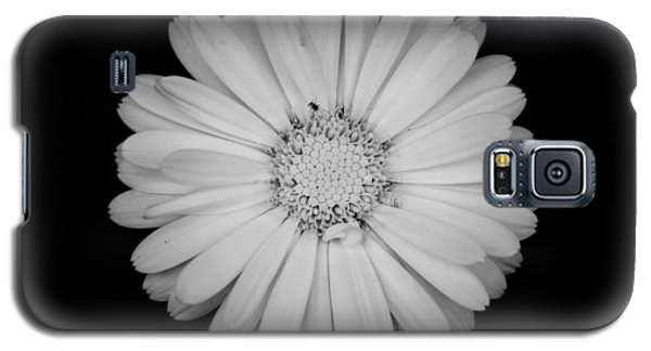 Galaxy S5 Case featuring the photograph Calendula Flower - Black And White by Laura Melis