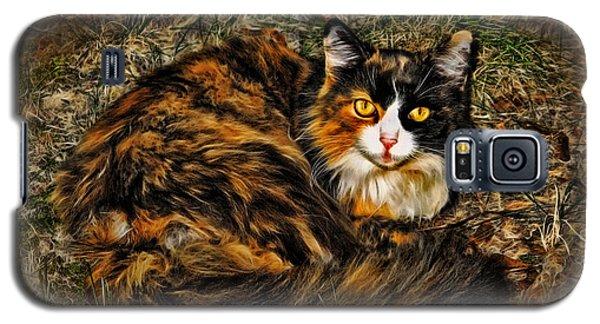 Calico Cat Galaxy S5 Case