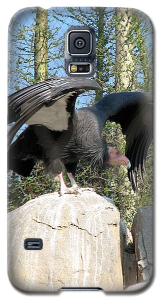 Galaxy S5 Case featuring the photograph California Condor by Carla Parris