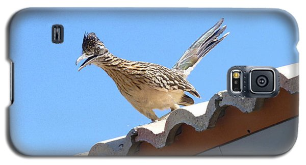 Galaxy S5 Case featuring the photograph California Roadrunner by Carla Parris