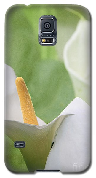 Calla Lilies Galaxy S5 Case by Alyce Taylor