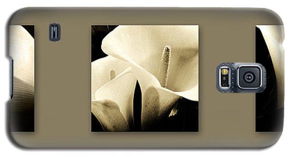 Calla Lilies Art Galaxy S5 Case