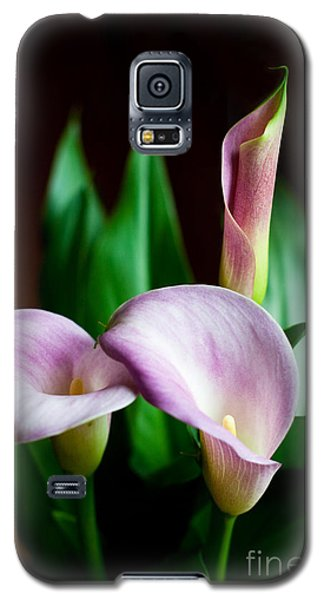 Galaxy S5 Case featuring the photograph Calla Lily by Barbara McMahon