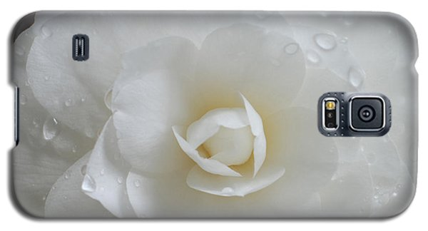 Camellia After Rain Storm Galaxy S5 Case