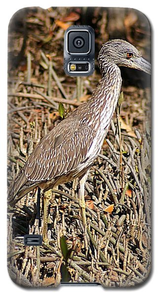 Camoflage Galaxy S5 Case by Joe Faherty
