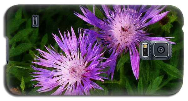 Galaxy S5 Case featuring the photograph Can Flowers Say Boo by Steve Taylor