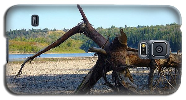 Galaxy S5 Case featuring the photograph Canadian Driftwood by Jim Sauchyn