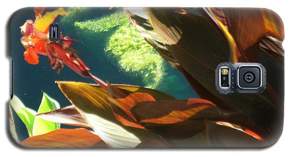 Canna Lily And Water In San Angelo Civic League Park Galaxy S5 Case by Louis Nugent