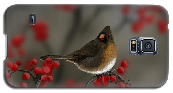 Cardinal Among The Berries Galaxy S5 Case