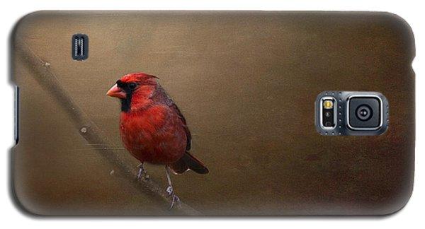 Cardinal Old Master - Artist Cris Hayes Galaxy S5 Case