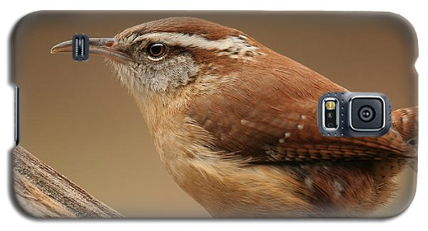 Carolina Wren Galaxy S5 Case